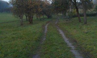 cesta 1