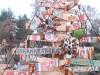 spdk_vanocni_zoo_marketa_grunova-2